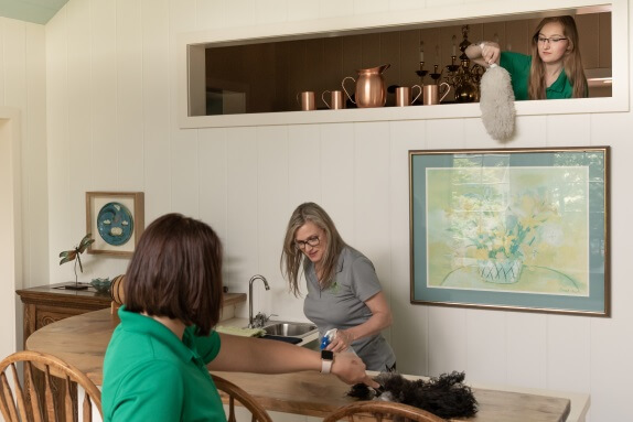 Zen Cleaning Services LLC - Bloomington Residential Cleaning Services